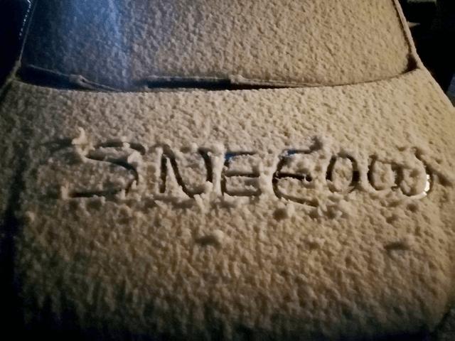الثلوج قادمة إلى هولندا